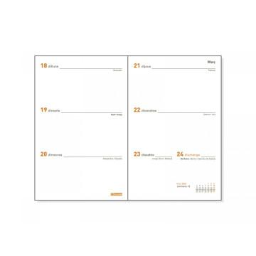 REC. AG. PLANA  3 (082x127) ANY S/VH CAT (P394C)