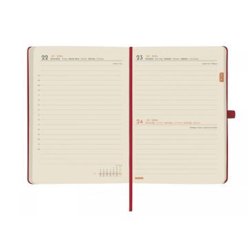 AG. FINOCAM LIN 8º (120x170) 1DP CATALA (M04)