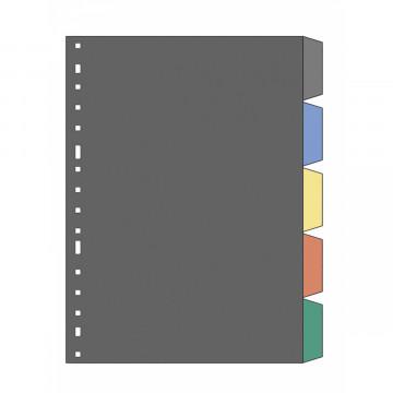 SEP.  5 POS. PLASTIC TRANSP. (226x311) 3005