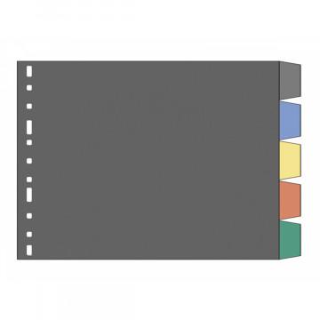 SEP.  5 POS. PLASTIC TRANSP. (328x215) 3006