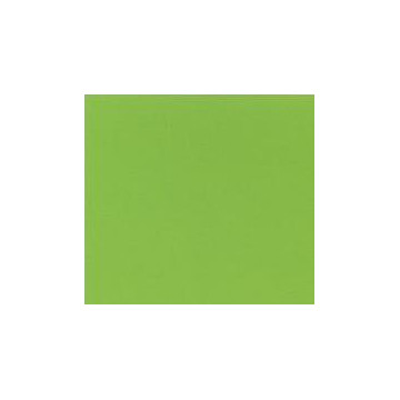 FORRO ADHESIU BRILLANT VERD CLAR (20m) AIRONFIX 67254